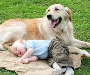 Ο-σκύλος-είναι-ο-καλύτερος-φίλος-του-παιδιού-300x250